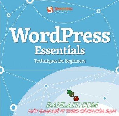 1.WordPress-Essentials-Techniques-for-Beginners-393x380.jpg