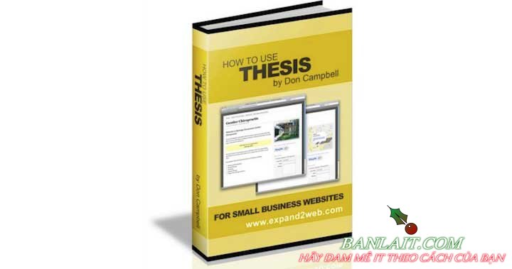How-to-Create-Small-Business-Websites-Using-the-Thesis-WordPress-Theme.jpg